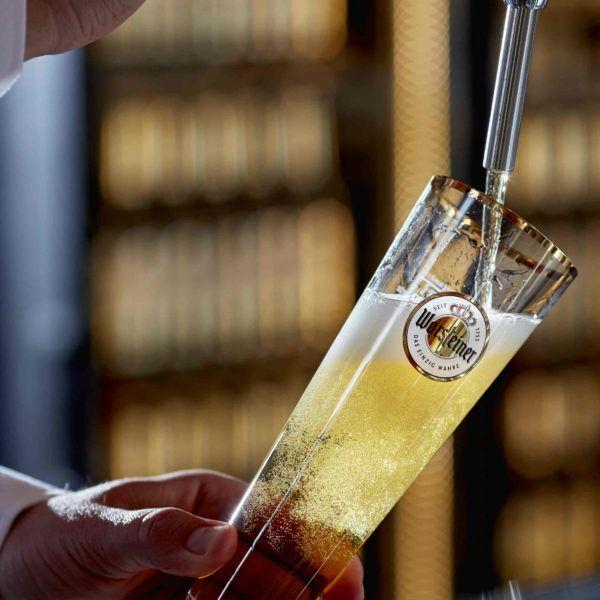 Warsteiner-brouwproces-bier