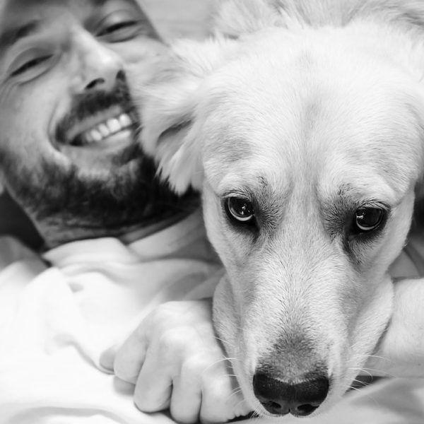 Hond-huisdier-onderzoek-reizen