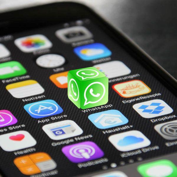 Whatsapp-nepversie